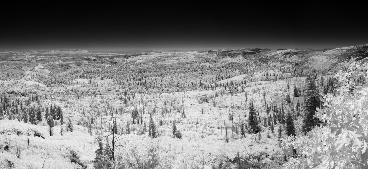 Lava Point Panorama in Infrared