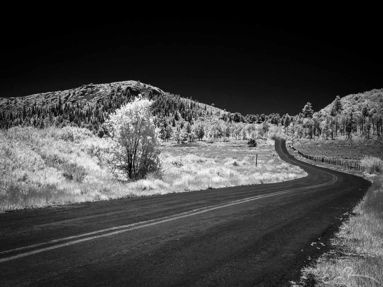 Kolob Resevoir Road in Infrared