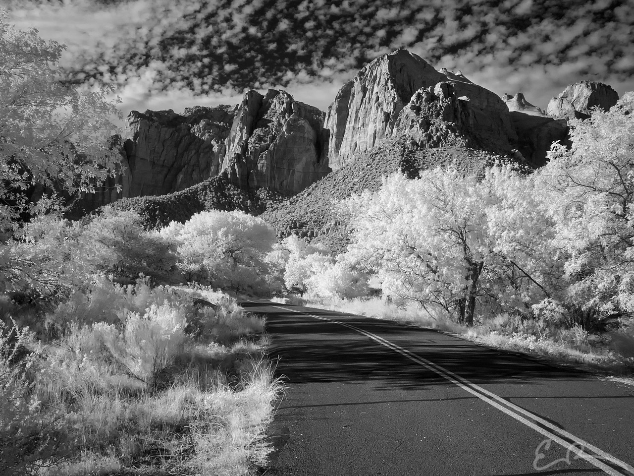 Service Road Only in Infrared