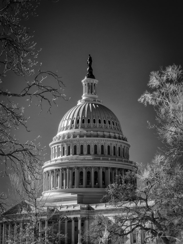 Capitol Building in Infrared I