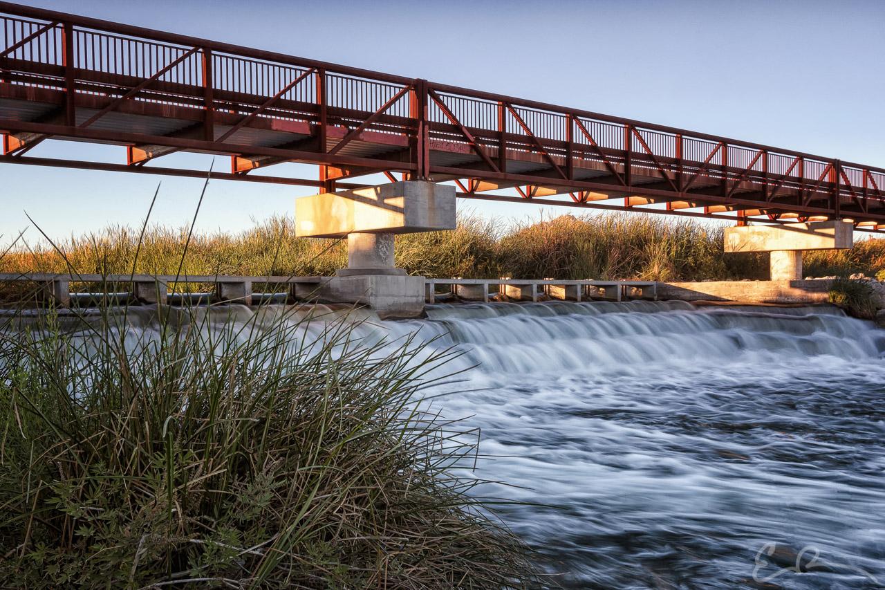 Wetlands Park Bridge I