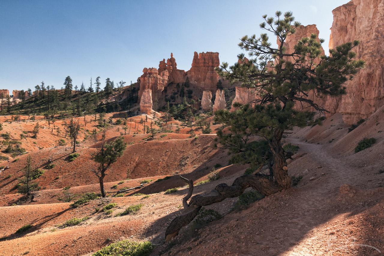 Fairyland Loop Trail III